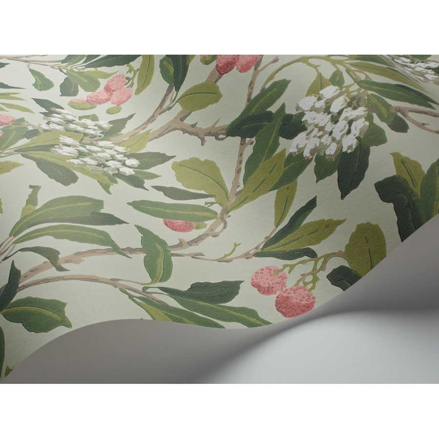Cole & Son Archive Anthology Strawberry Tree 100/10048 Wallpaper