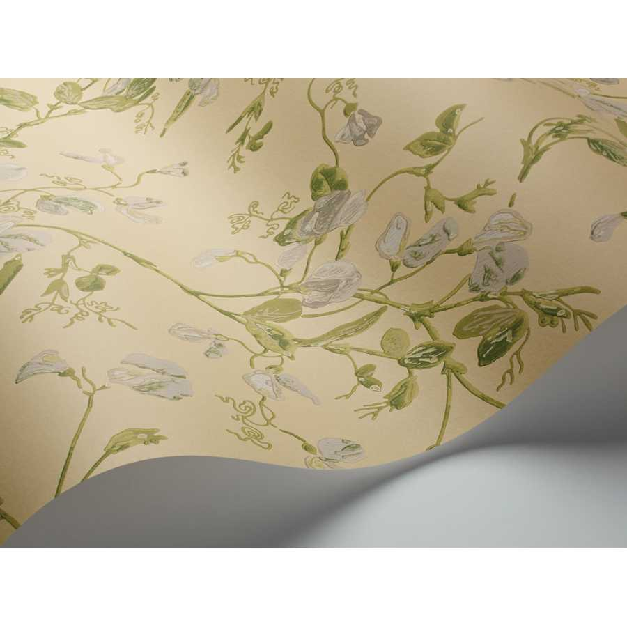 Cole & Son Archive Anthology Sweet Pea 100/6029 Wallpaper