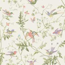 Cole and Son Archive Anthology Hummingbirds 100/14067 Wallpaper