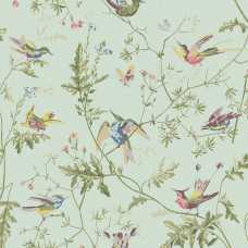 Cole and Son Archive Anthology Hummingbirds 100/14069 Wallpaper