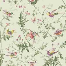 Cole and Son Archive Anthology Hummingbirds 100/14070 Wallpaper