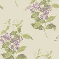 Cole and Son Archive Anthology Madras Violet 100/12056 Wallpaper