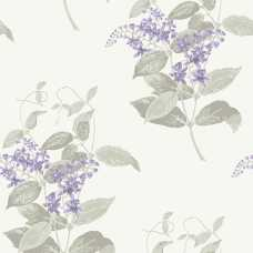 Cole and Son Archive Anthology Madras Violet 100/12057 Wallpaper