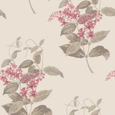 Cole and Son Archive Anthology Madras Violet 100/12058 Wallpaper