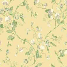 Cole and Son Archive Anthology Sweet Pea 100/6029 Wallpaper