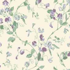 Cole and Son Archive Anthology Sweet Pea 100/6030 Wallpaper