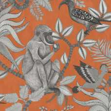 Cole and Son Ardmore Savuti 109/1001 Wallpaper