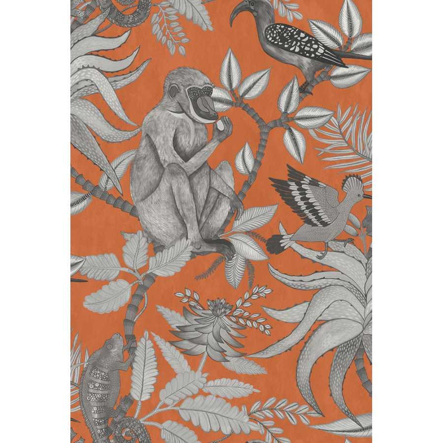 Cole & Son Ardmore Savuti 109/1001 Wallpaper