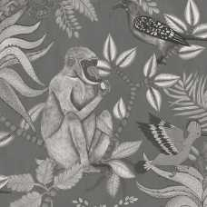 Cole and Son Ardmore Savuti 109/1002 Wallpaper