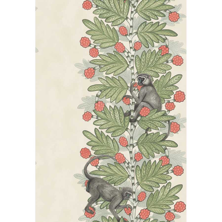 Cole & Son Ardmore Acacia 109/11051 Wallpaper