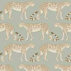 Cole and Son Ardmore Leopard Walk 109/2009 Wallpaper