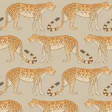 Cole and Son Ardmore Leopard Walk 109/2010 Wallpaper