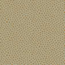 Cole and Son Ardmore Senzo Spot 109/6029 Wallpaper