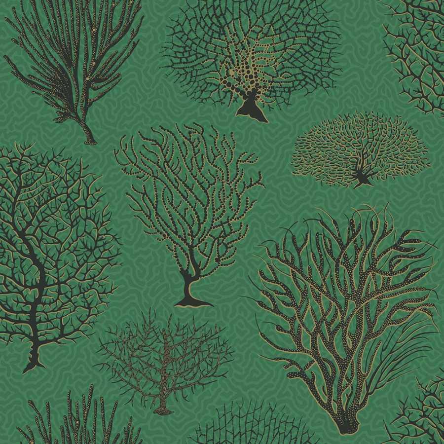 Cole & Son Curio Seafern 107/2007 Wallpaper