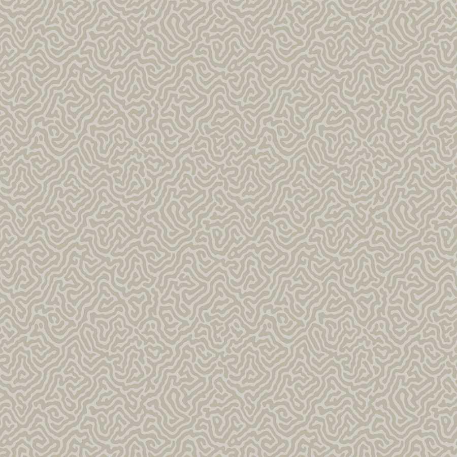 Cole & Son Curio Vermicelli 107/4019 Wallpaper