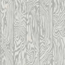 Cole and Son Curio Zebrawood 107/1004 Wallpaper