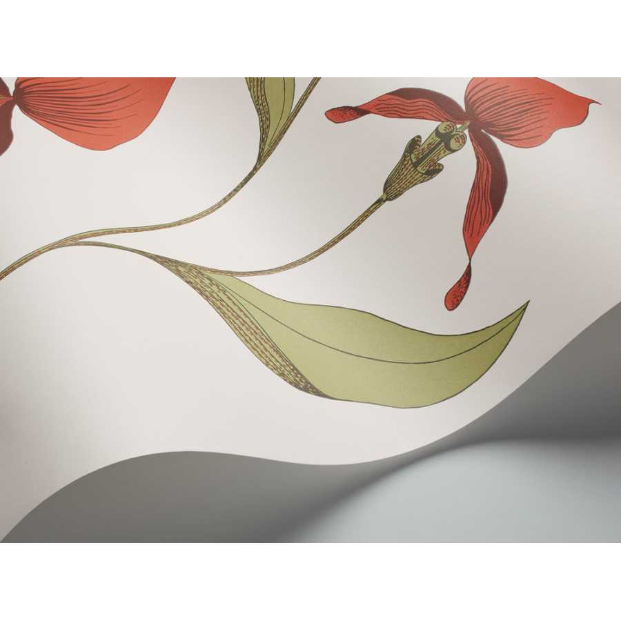 Cole and Son Contemporary Restyled Orchid 95/10054 Wallpaper