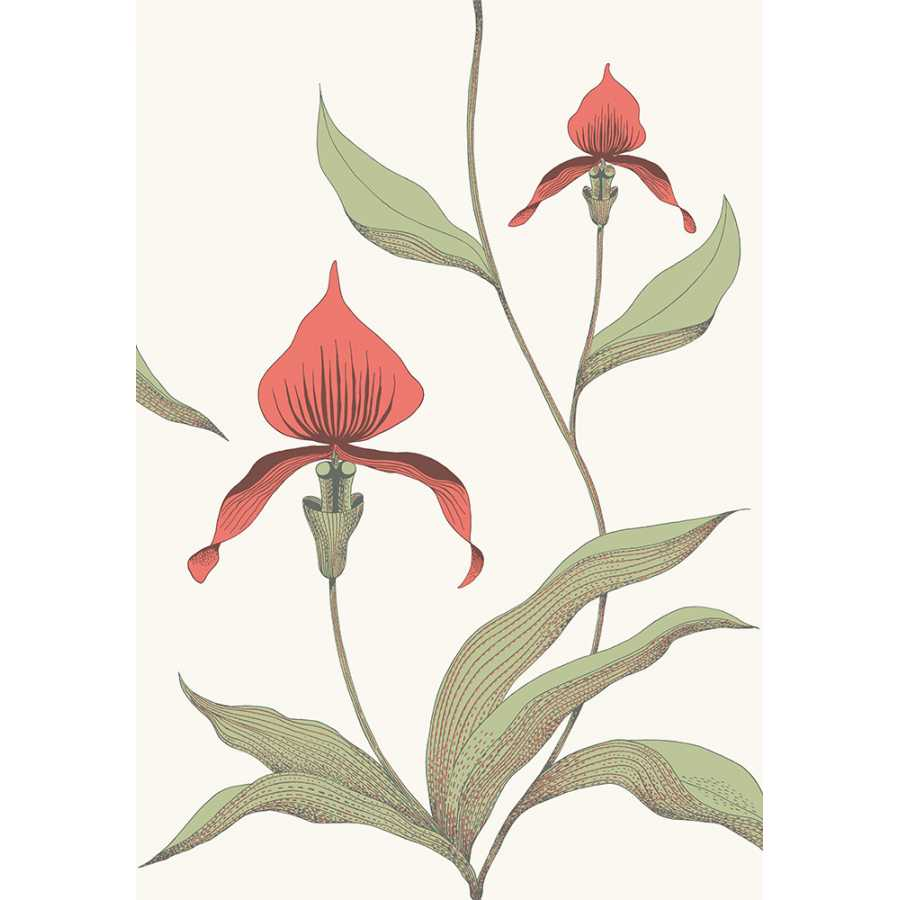 Cole & Son Contemporary Restyled Orchid 95/10054 Wallpaper
