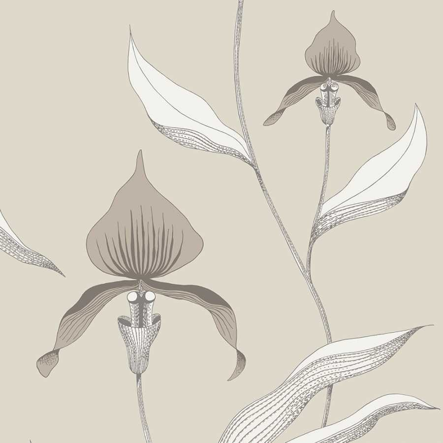 Cole & Son Contemporary Restyled Orchid 95/10058 Wallpaper