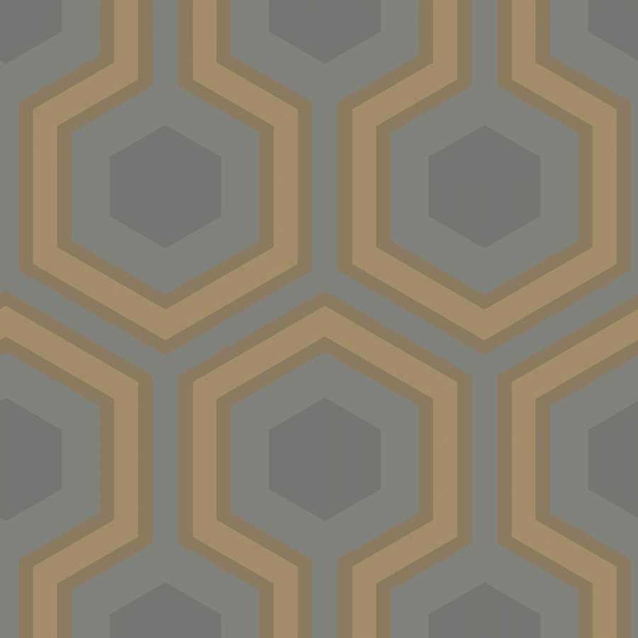 Cole & Son Contemporary Restyled Hicks Grand 95/6033 Wallpaper