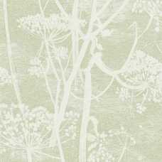 Cole and Son Icons Cow Parsley 112/8029 Wallpaper