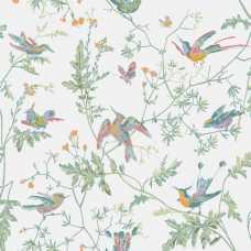 Cole & Son Icons Hummingbirds 112/4016 Wallpaper