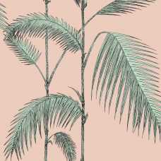 Cole & Son Icons Palm Leaves 112/2005 Wallpaper