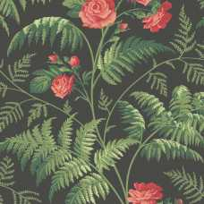 Cole and Son Botanical Rose 115/10030 Wallpaper