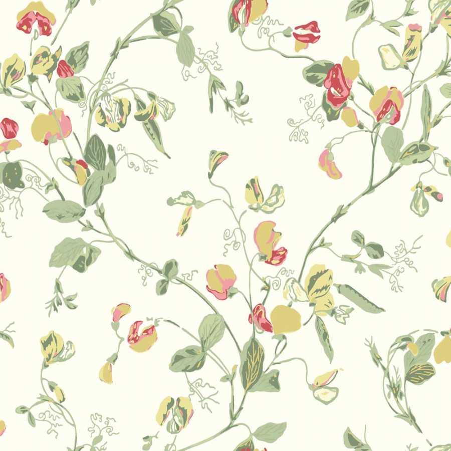 Cole & Son Botanical Sweet Pea 100/6027 Wallpaper
