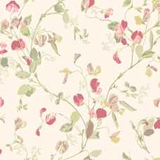 Cole and Son Botanical Sweet Pea 100/6028 Wallpaper