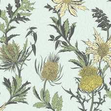 Cole and Son Botanical Thistle 115/14042 Wallpaper
