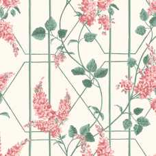 Cole and Son Botanical Wisteria 115/5012 Wallpaper