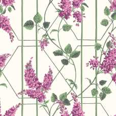 Cole and Son Botanical Wisteria 115/5013 Wallpaper