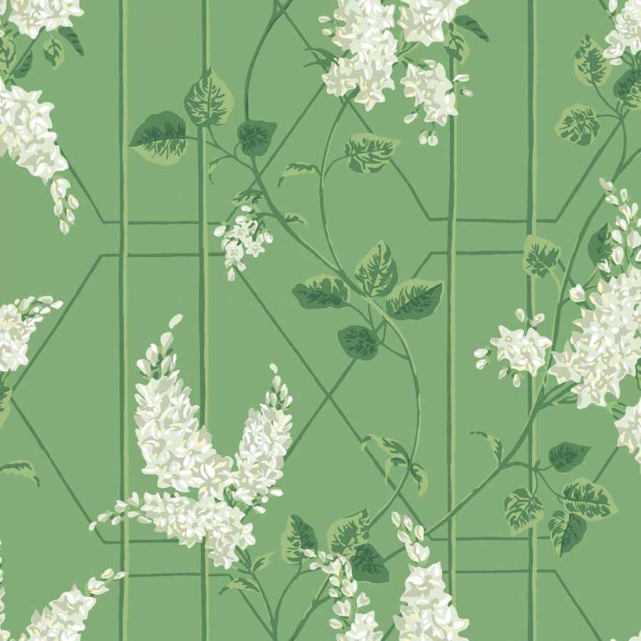 Cole & Son Botanical Wisteria 115/5016 Wallpaper