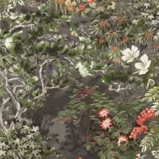 Cole and Son Botanical Woodland 115/4011 Wallpaper