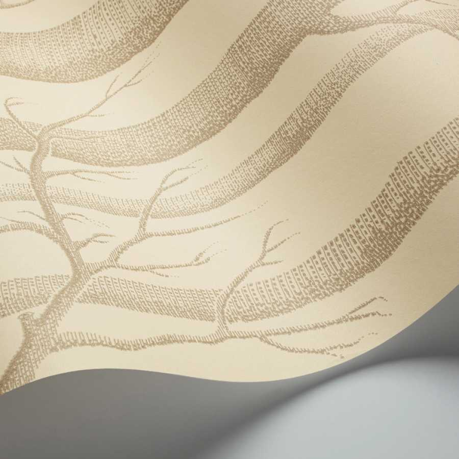 Cole and Son New Contemporary II Woods 69/12148 Wallpaper