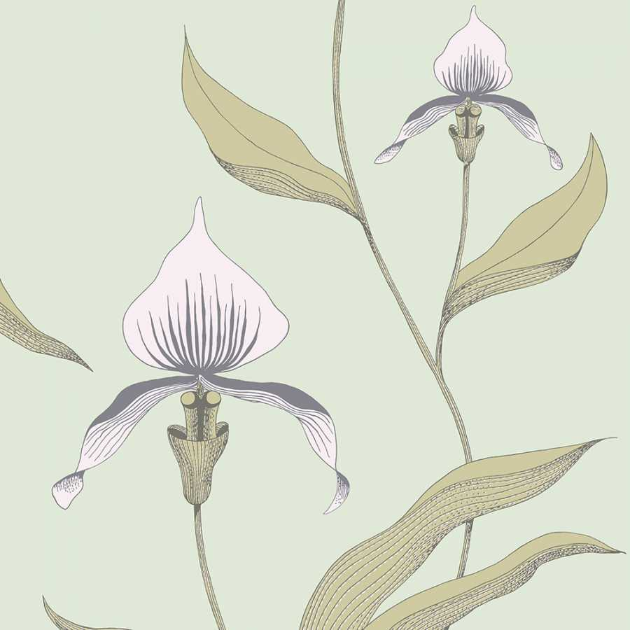 Cole and Son New Contemporary Orchid 66/4028 Wallpaper