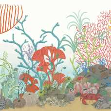 Cole and Son Whimsical Archipelago 103/12054 Wallpaper Border