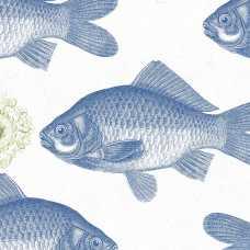 MINDTHEGAP Fish Blue Wallpaper