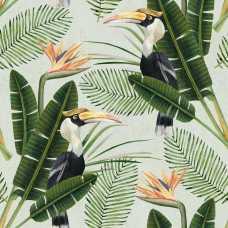 MINDTHEGAP Birds of Paradise Wallpaper