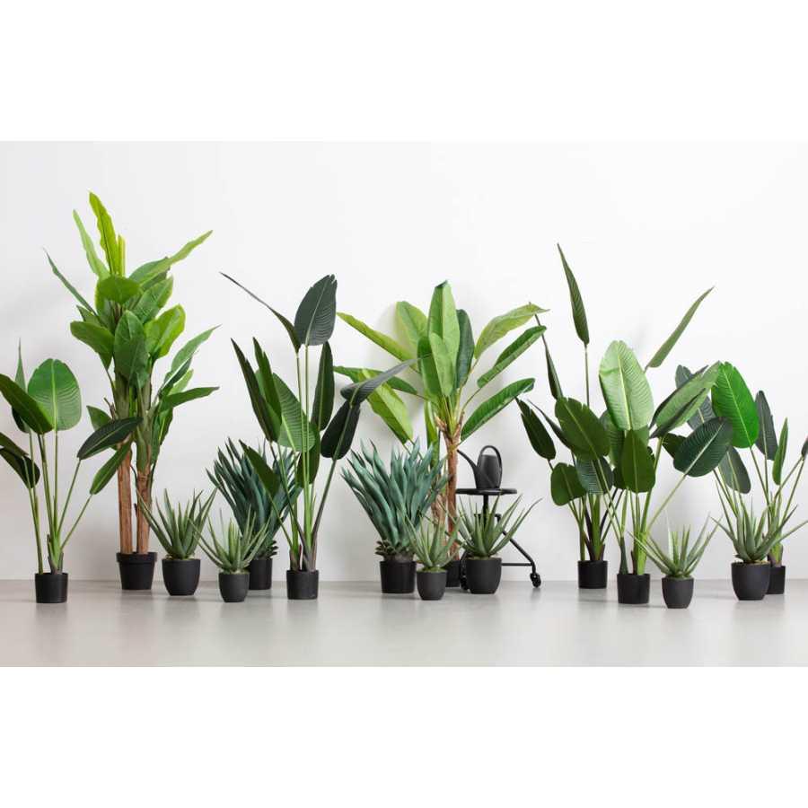 WOOOD Aloe Vera Artificial Plant