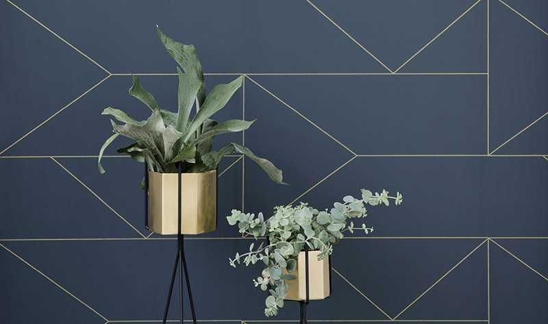 5 Key Wallpaper Themes to Consider: